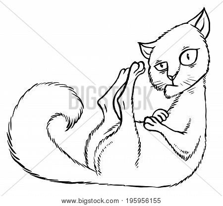 Sly cartoon cat sitting in the corner - vector illustration
