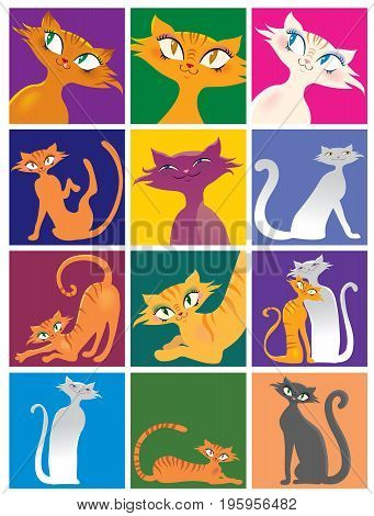 Cartoon cat of different pose and color