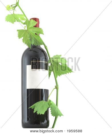 Wine Bottle And Leaves