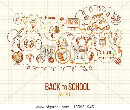 Back to School infographic. Vector illustration of school supplies and subjects. Sketch design for retro style web and mobile services. Icons for online education, web banners. Notepad sheet