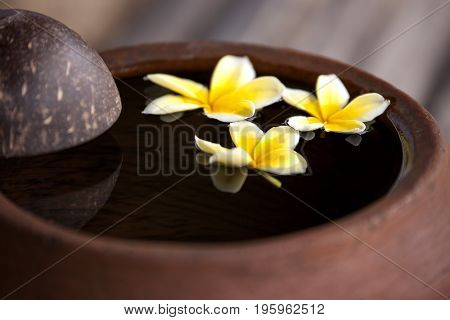 Touching nature. Clay jug relaxing and peaceful with flower plumeria or frangipani decorated on water in bowl in zen style for spa meditation mood