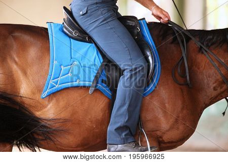 Unknown rider on dressage training sit in saddle