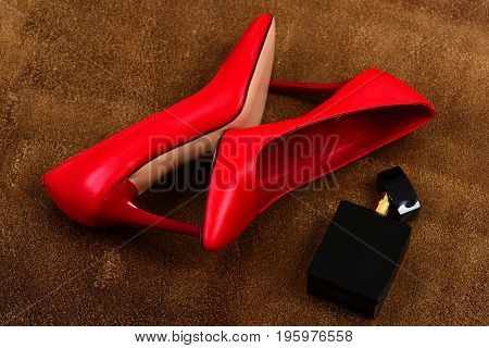 Fashion And Beauty Concept. Pair Of Fancy Leather Female Shoes
