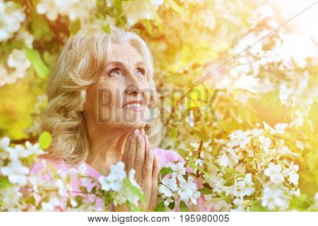 Portrait of beautiful senior woman praying while standing in blooming cherry tree