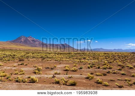 View of the mountains and desert landscape around the altiplanic lagoons in the Atacama Desert Chile South America
