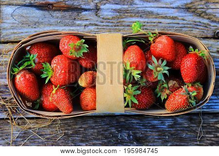 Strawberries in a basket in the garden. Juicy red berries and leaves in a wicker basket on the wooden table. Delicious and healthy food