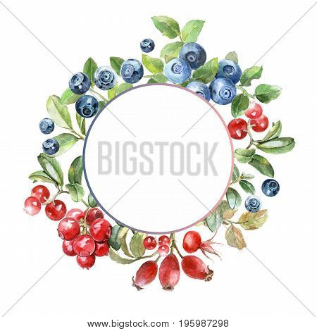 watercolor illustration berries frame, blueberry, dog rose, cowberry