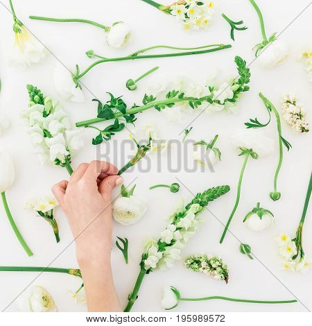 Floral pattern made of white flowers and woman hand on white background. Flat lay, top view. Floral background