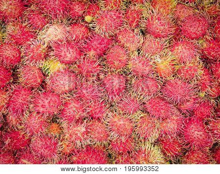 Fresh rambutan fruit in the market Thailand.