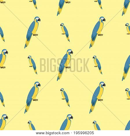 Cartoon tropical parrot wild animal bird seamless pattern vector illustration wildlife flying cute feather zoo color nature vivid. Perch tropics fly fauna jungle pretty colourful macaw.