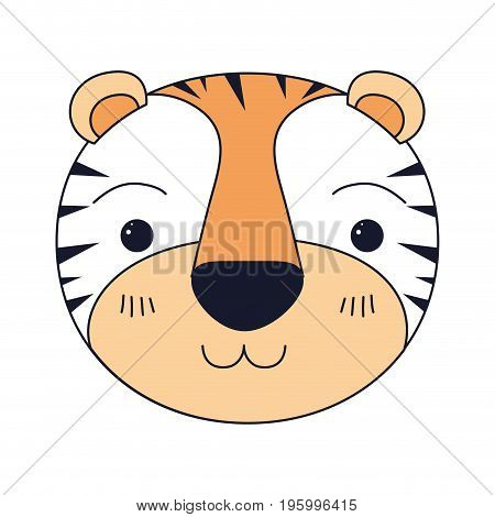 color sections of cute face of tiger happiness expression vector illustration