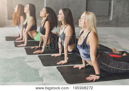 Women in yoga class, cobra pose stretching. Girls do exercises. Healthy lifestyle in fitness club