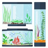 Transparent aquarium vector illustration underwater fish tank bowl habitat house. Tropical sea aquatic cartoon water tank freshwater glass fishbowl. poster