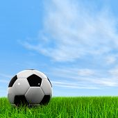 3d leather black and white soccer ball on green grass over a natural clear blue sky background poster