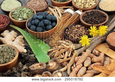 Adaptogen food with herbs, spices, fruit,flowers and supplement powders. Used in herbal medicine to help the body resist the damaging effect of stress and restore normal physiological functioning.