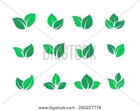 Flat Leaves Set. Vegan Green Food Logos, Farm Plant Eco And Bio Energy, Simple Forest Leaf Herbal Te