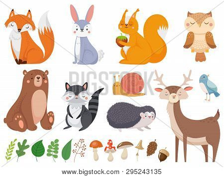 Cute Woodland Animals. Wild Animal, Forest Flora And Fauna Elements Isolated Cartoon Vector Illustra