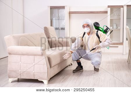 Pest control contractor working in the flat