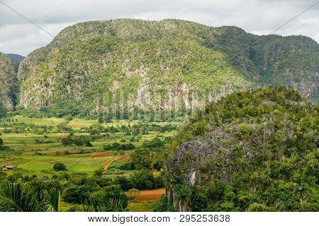 Green Caribbean Valley With Mogotes Hills Landscape, Vinales, Pinar Del Rio, Cuba