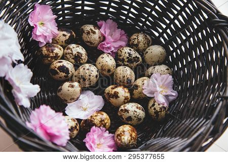 Quail Eggs In Brown Rattan Basket And Pink Flowers Composition On Beige Background. Easter Concept.