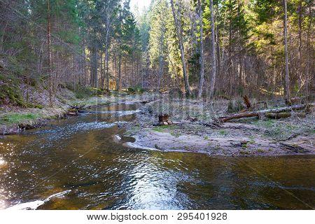 Nature And River Kumada. Trees And Water. Travel Photo 2019.