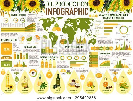 Oil Production Vector Infographics With Charts And Graphs Of Vegetable And Plant Manufacturers. Sunf