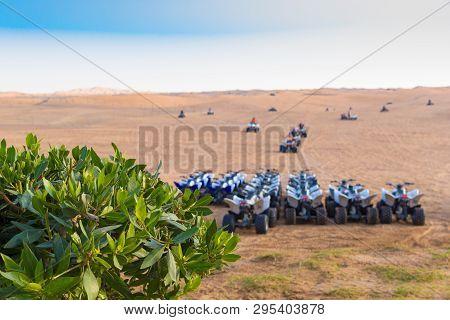 Quad Motorbike Safari In Dubai Desert, Uae
