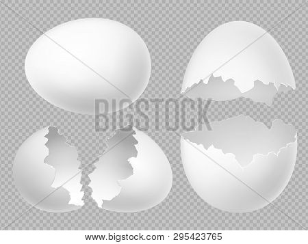 Vector Realistic White Eggs Set With Whole And Broken Eggs Isolated On Transparent Background. Illus