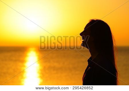 Side View Portrait Od A Happy Girl Silhouette Contemplating Sun At Sunset On The Beach
