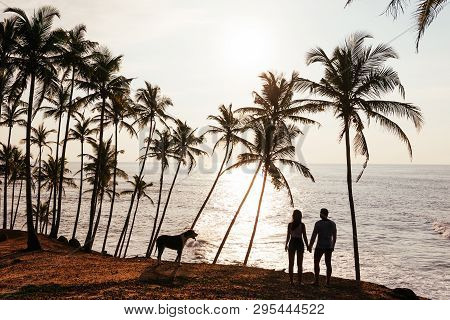 Wedding Travel. Silhouette Of Lovers At Sunset. Honeymoon Trip. Man And Woman On The Beach. Lovers A