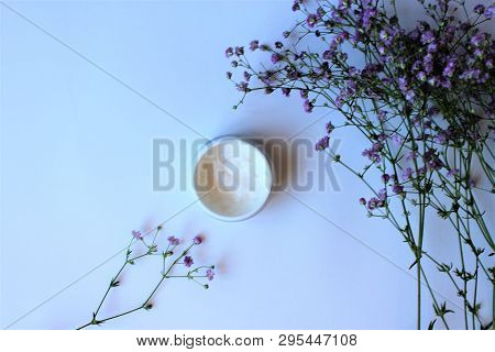 Flower, Pink, Blossom, Spring, Nature, White, Flowers, Plant, Floral, Bouquet, Bloom, Green, Beautif