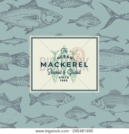 Hand Drawn Fish Vector Background Pattern. Abstract Package Sketch Card Or Cover Template With Trend