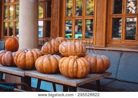 Many Large Orange Pumpkins Lie In The Street . Autumn Street Decoration.