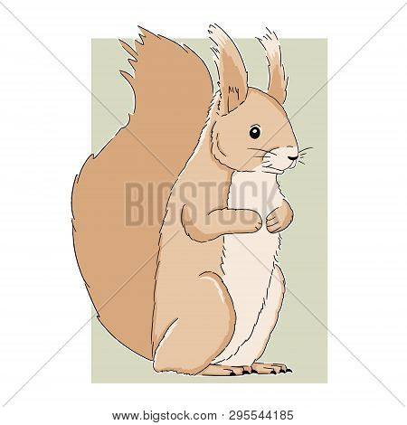 Cartoon Squirrel Art On Light Background. Vector Hand Drawn Illustration Of Cute Little Squirrel. An