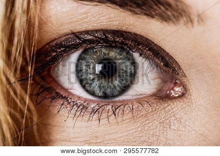 Close up view of female blue eye. Eyesight concept.