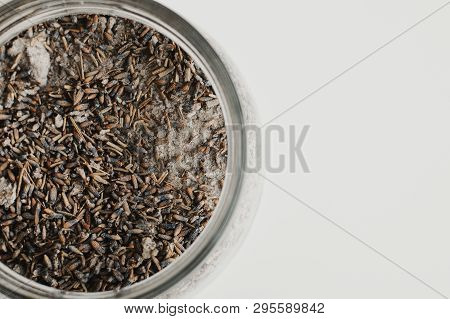 Body Scrub With Lavender And Salt On White Background. Body Peeling
