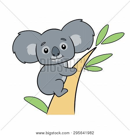 Illustration Of A Cute Koala Bear On A Tree On A White Background