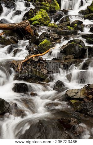 A Limb Rubbed Smooth Sitting In The Middle Of Starvation Creek.  Shot Taken With Slow Shutter Speed.