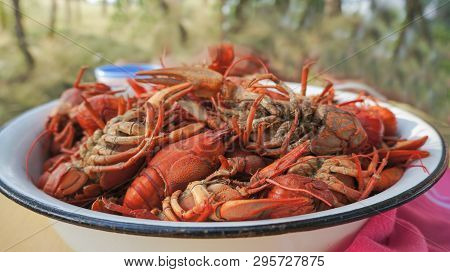 tailed boiled crayfish, food from river dwellers, food from crustaceans, boiled crayfish poster