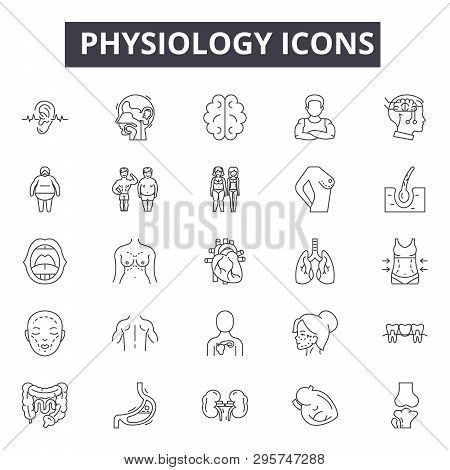Physiology Line Icons, Signs Set, Vector. Physiology Outline Concept, Illustration: Physiology, Medi