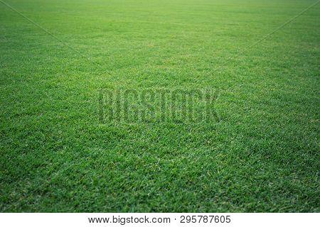 Green Grass Soccer Field Background Beautiful Pattern Of Fresh Green Grass For Football Sport, Footb