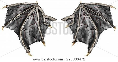Bloody Dragon Wings, Isolated On White Background. Close Up.