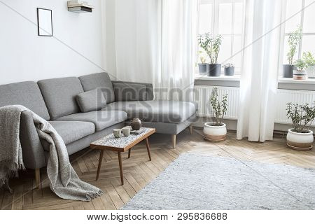 Stylish Scandinavian Interior Of Living Room With Small Design Table ,sofa, Lamp And Shelfs. White W