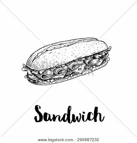 Long Chiabatta Sandwich With Ham Slices, Cheese, Tomatoes And Lettuce Leaves. Hand Drawn Sketch Styl