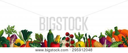 Wide Horizontal Vegetable Background. Copy Space. Variety Of Decorative Vegetables With Grain Textur