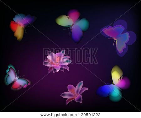 illustration with painted butterflies and flowers on dark background