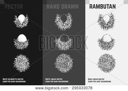 Hand Drawn Rambutan Or Nephelium Icons Set Isolated On White, Gray And Black Chalk Background. Sketc