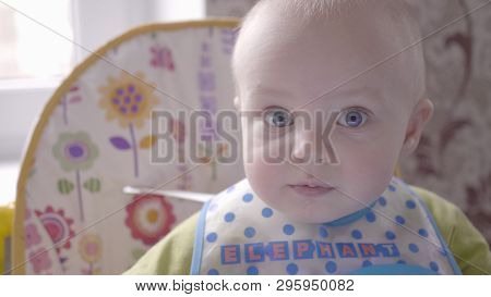 Beautiful Baby Boy At The Table Take A Cookie In His Hand, Eating It, Watching Into The Camera And B