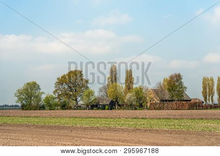 Typical Old Dutch Farmhouse With A Barn Surrounded By Trees, Hedges And A Fence. The Photo Was Taken
