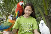 Child with beautiful parrots in a zoo in Bangkok poster